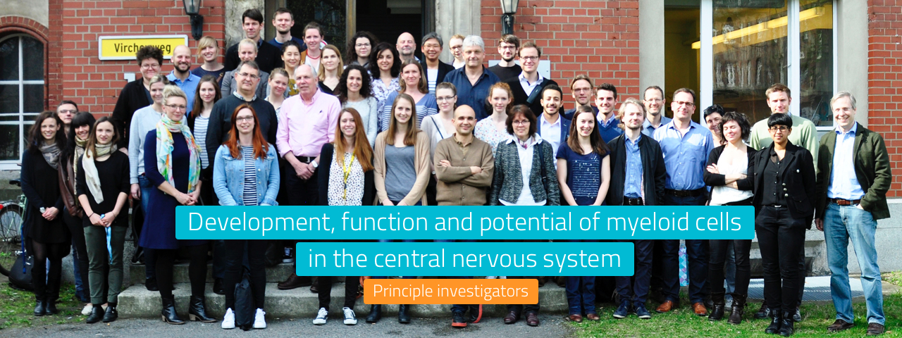 Development, function and potential of myeloid cells in the central nervous system.
